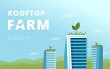 Rooftop Farm Concept.