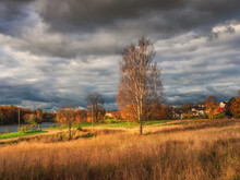 Bright Autumn Rustic Landscape With A Tall Tree By The Road. Dark Sky Over The Village Before The Storm