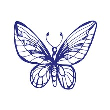 Butterflies Insects Graphic Illustration Hand-drawn Vector Doodle Sketch. Nature Animals Wings In Flight