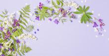 Spring Flowers On Violet Paper Background