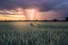 Lightning Strike During A Summer Thunderstorm At Sunset Near Rastatt Plittersdorf