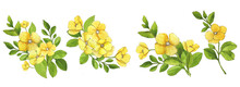 Watercolor Set Of Bouquets Of Yellow Flowers