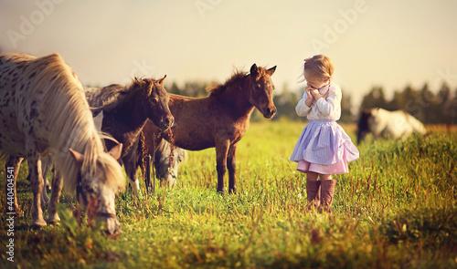 Fotografie, Obraz A cute white girl in jockey boots walking among little pony in the field on a sunny summer day