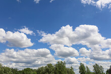 Beautiful Cloudscape Over Tree Line On A Bright Summer Day.