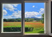 Vue D'une Fenêtre Ouverte Sur Un Champ De Coquelicots En Fleurs