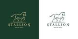 Elegant horse icon. Royal stallion logo. Equine stables sign. Equestrian brand emblem. Vector illustration.