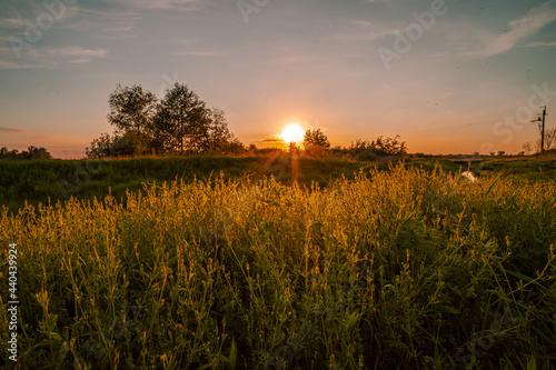 Leni zachód słońca, Piaseczno, Mazowieckie
