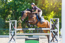Young Horse Rider Girl Jumping Over A Barrier On Show Jumping Course In Equestrian Sports Competition