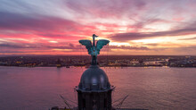Liver Bird In The Sunset