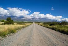 Camino De Campo En Mendoza