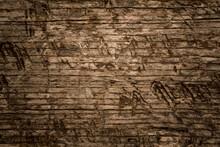 Wood Texture Background. Dark Old Tree Texture