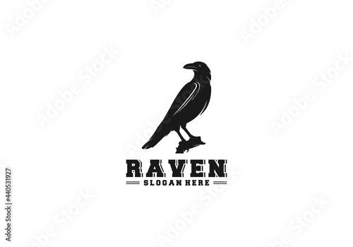 Valokuva logo black raven in white background