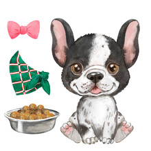 Puppy French Bulldog Watercolor Illustration, Pet, Cute Animal, Black And White Dog