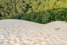 The Great Dune Of Pyla (or Pilat) Invading The Pine Forest. Arcachon Bay, France.