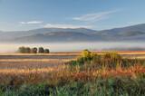 łąki, drzewa, pola o świcie, w porannej mgle. W tle góry - Karkonosze
