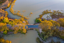 Looking Down On Golden Treetops Over A Road Bridge Crossing An Inland Lake