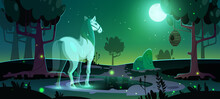 Banner Of Mystery With Glowing Horse Ghost In Dark Forest At Night. Vector Poster With Cartoon Fantasy Illustration Of Horse Spirit In Park Or Garden With Trees And Pond