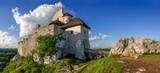 Fototapeta Kwiaty - Szlak Orlich Gniazd-zamek Bobolice na południu Polski