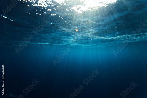 Canvastavla reef diving