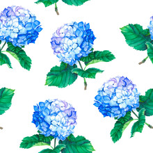 Blooming Blue Hydrangea Seamless Pattern On A White Background.