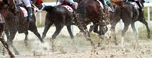 Fotografie, Obraz Back view of horses racing.