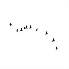 Birds Flying Into Sky Stock Illustration.