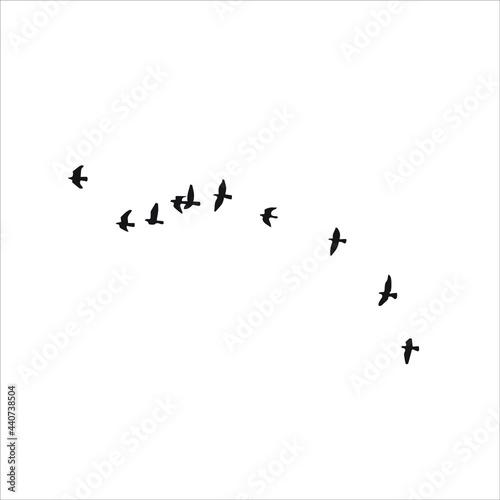 Fotografia, Obraz Birds flying into sky stock illustration.