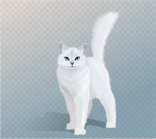 Vector White Cat With Blue Eyes And Fluffy Tail. Cat Standing And Looking In Camera. Front View Illustration