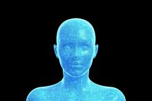 Woman, Head Of Human Female, 3D