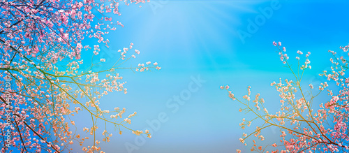Foto A beautiful pink cherry-like tree in blue sky background