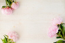 Studio Shot Of Beautiful Peony Flowers Over Textured Background With A Lot Of Copy Space For Text. Feminine Floral Composition. Close Up, Top View, Backdrop, Flat Lay