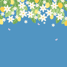Square Banner.  Lemons Hanging On Branches, An Abundance Of Green Foliage And Blossoming Flowers Of Various Sizes, With Fluttering Pink Butterflies.  Vector Illustration.