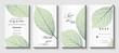 Wedding invitation.  Background with leaf vein. Vector illustration.