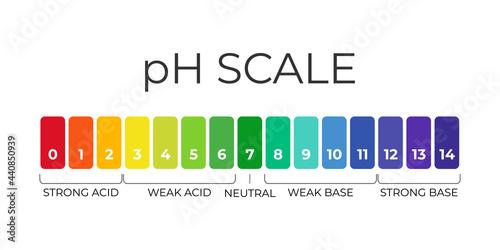 Murais de parede pH value scale chart for acid-alkaline solution