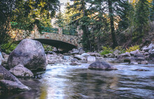 Bridge Over The Flowing River In The Middle Of A Forest