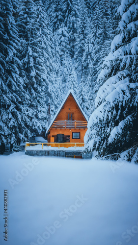 Fotografie, Obraz Beautiful view of the wooden hut located in the middle of the forest on a snowy