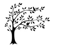 Beautiful Tree Branch Silhouette Background For Wallpaper
