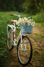 Photo Of A Retro Bicycle With White Daisies.