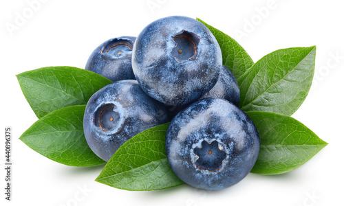 Fotografija Organic blueberry isolated on white background