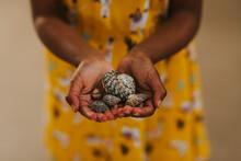 Little Girl Holding Seashells In Her Hands