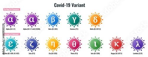 Fotografie, Obraz Set of Coronavirus or SARS-CoV-2 Variant Colorful Illustration