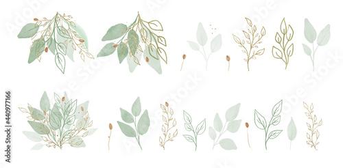 Cuadros en Lienzo Vector Big Set botanic elements - wildflowers, herbs, leaf