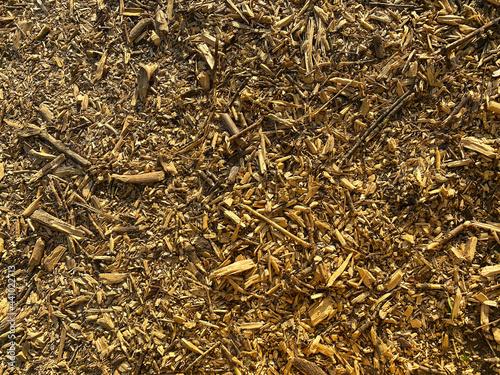 Obraz na plátně Wooden sawdust background. Wood chips texture.