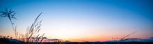 Beautiful Sunset Over The Bridge At Miyazaki City
