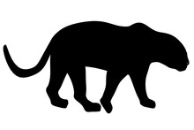 Silhouette Of A Cheetah Isolated On A White Background. Side View. Vector Illustration