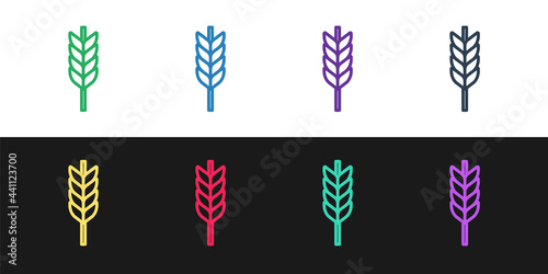 Fényképezés Set line Cereals set with rice, wheat, corn, oats, rye, barley icon isolated on black and white background
