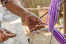 Close-up Of Hand Holding Purple