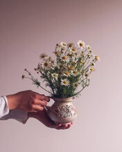 Midsection Of Person Holding Flower