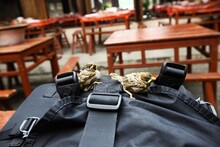 Close-up Of Sparrows On Bag