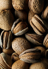 Almonds In Shell, In Close Up, Textured